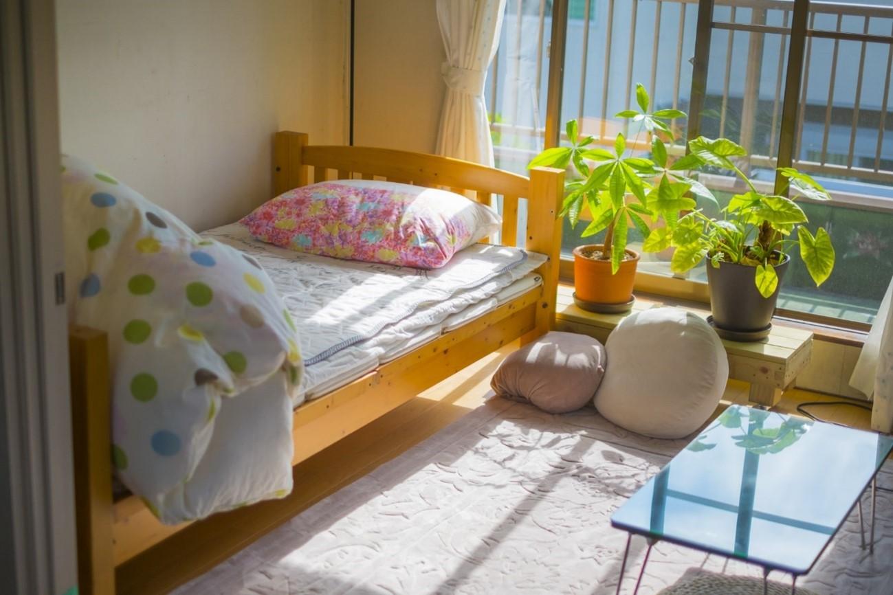 ベッド 観葉植物 日光